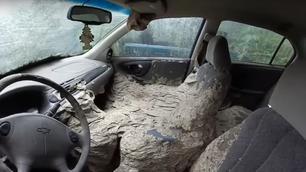 Video: gigantisch wespennest neemt auto-interieur over